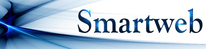 Smartweb-24